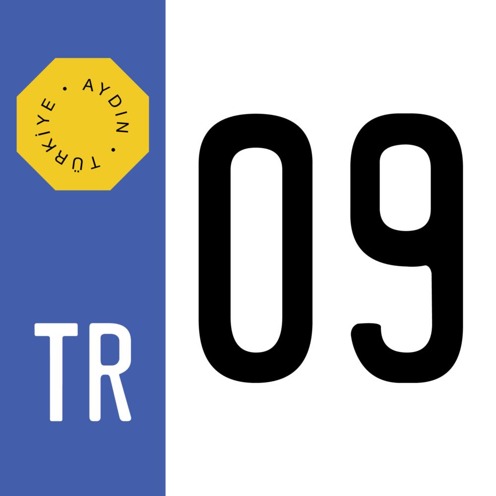 turkish-license-plate-09-aydin-province