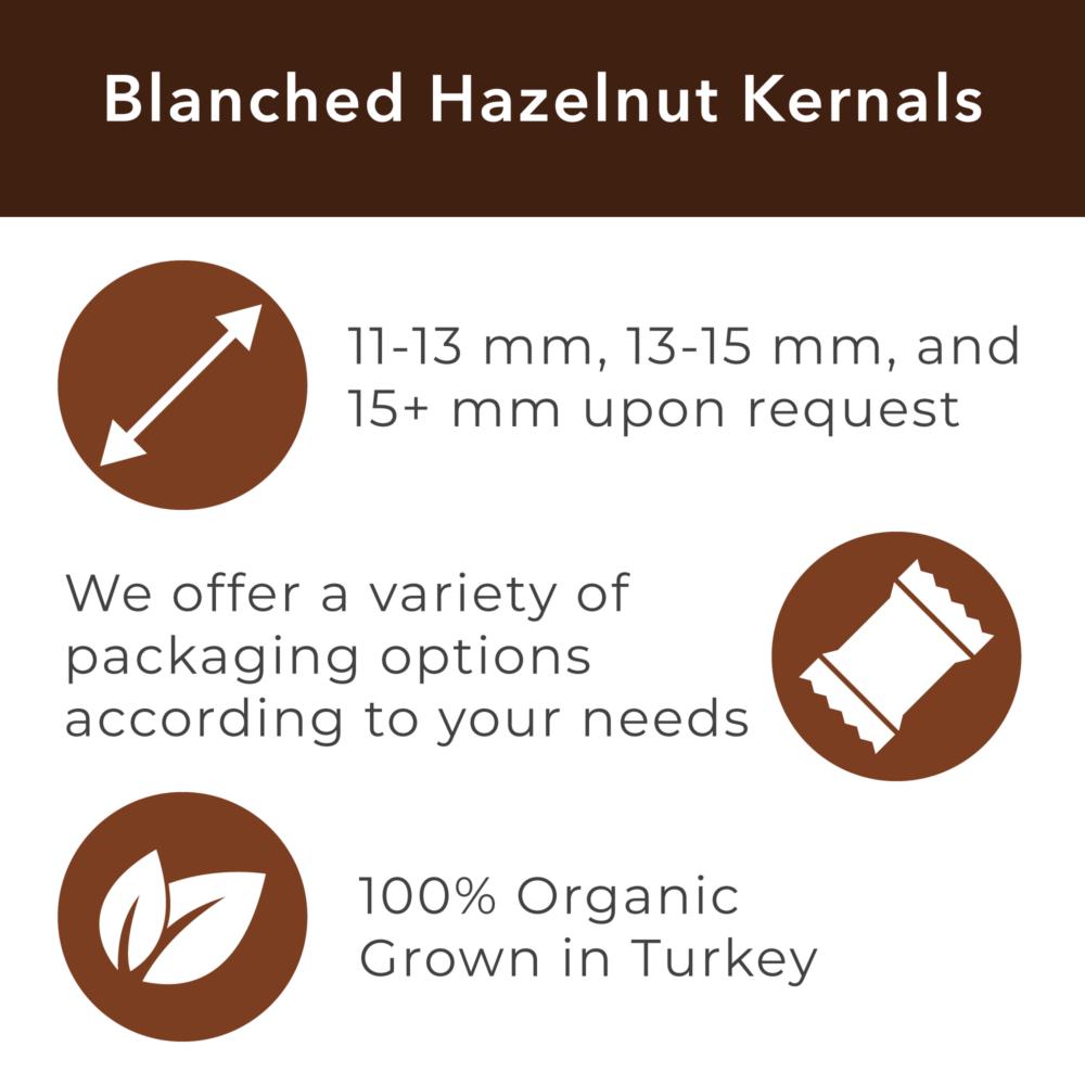 jason-b-graham-blanched-hazelnut-kernals-67341b