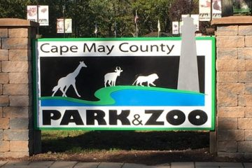 Cape May County Zoo Named Best Zoo In NJ