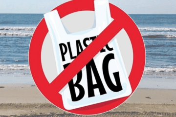 Should Wildwood Consider A Plastic Bag Ban