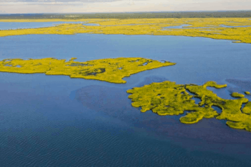 Wildwood Private Island Up For Sale