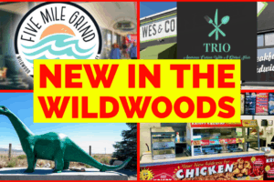 NEW In The Wildwoods 2021!