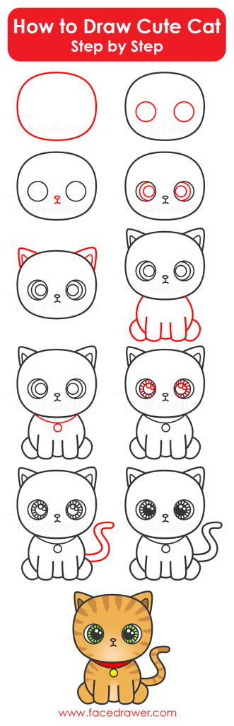 how to draw cute cat step by step infographic