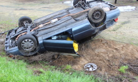 Solo vehicle rollover reported in Livingston
