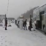 俄罗斯华人在军警押送下被送上车