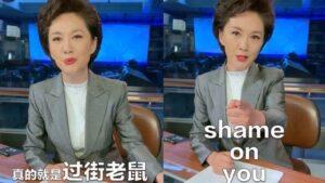 央视一女主播