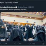 阿富汗塔利班宣布大学女生新规, 网友希望华春莹到阿富汗体验小四的生活