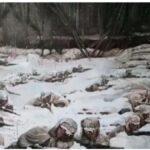 朝鲜韩战志愿军被当成蚂蚁活活冻死