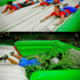 Heat Up Your Image with Summer Time Interactive Inflatables 3