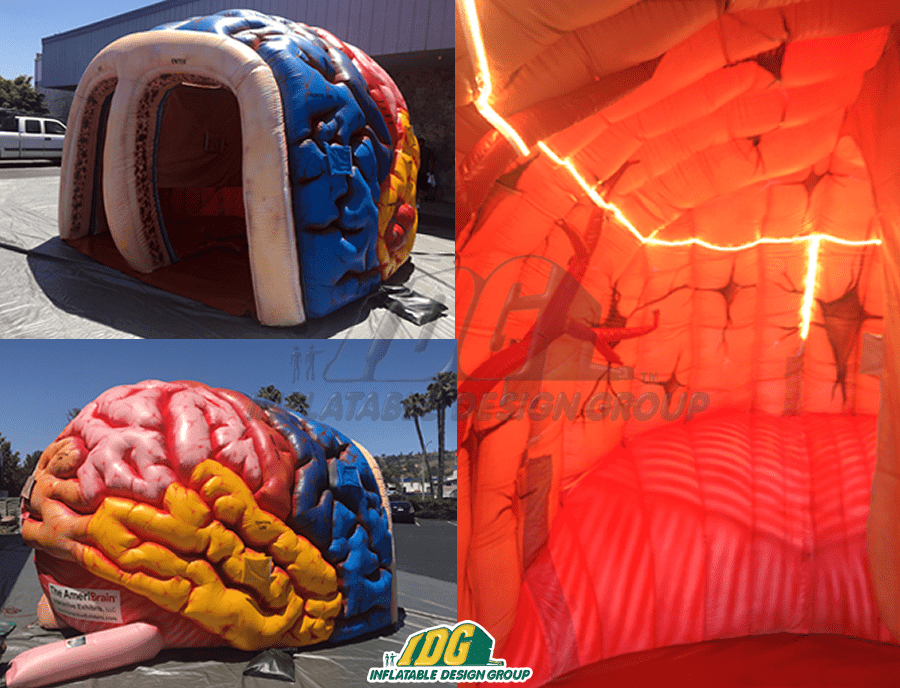 State the Facts with an Inflatable Medical Exhibit