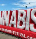 Marijuana and Smoking Inflatables