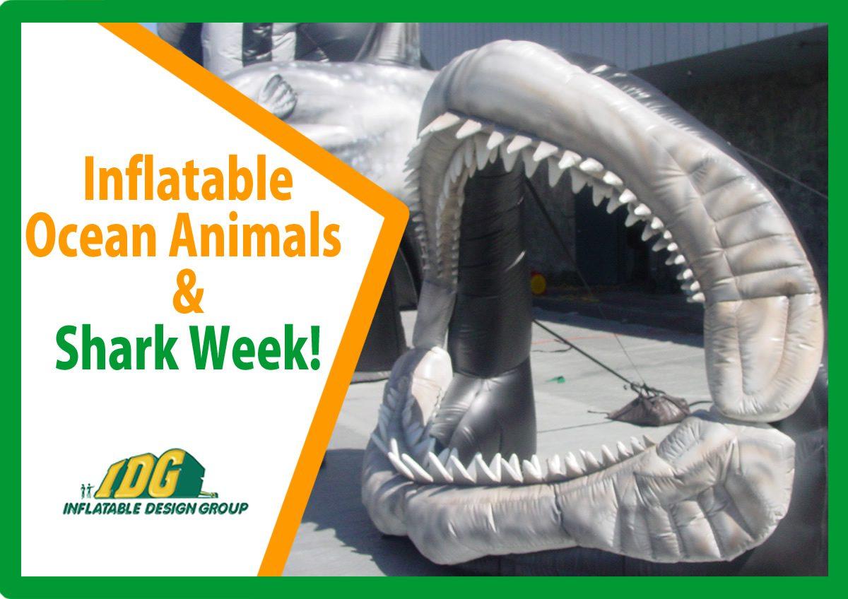 Make a big SPLASH with Custom Inflatable Ocean Animals 6