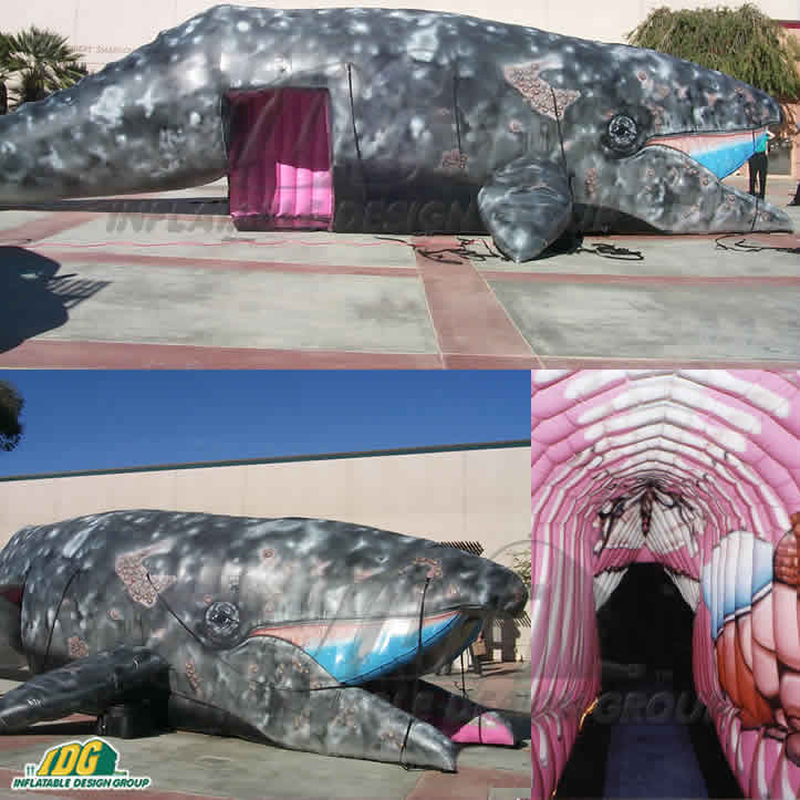 Dive into Shark Week with Custom Inflatable Marine Animals
