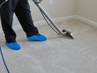 professional carpet experts