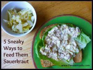 Ways to Serve Sauerkraut | Fermentools