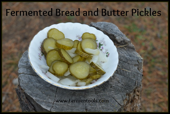 bread and butter pickle recipe | fermentools.com