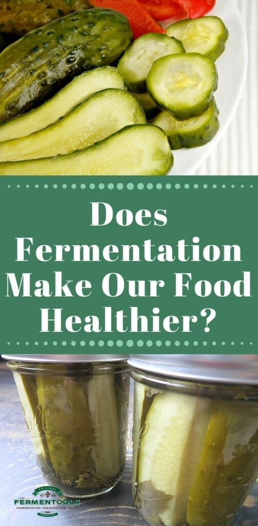 Does Fermentation Increase the Nutritional Value of Food | Fermentools