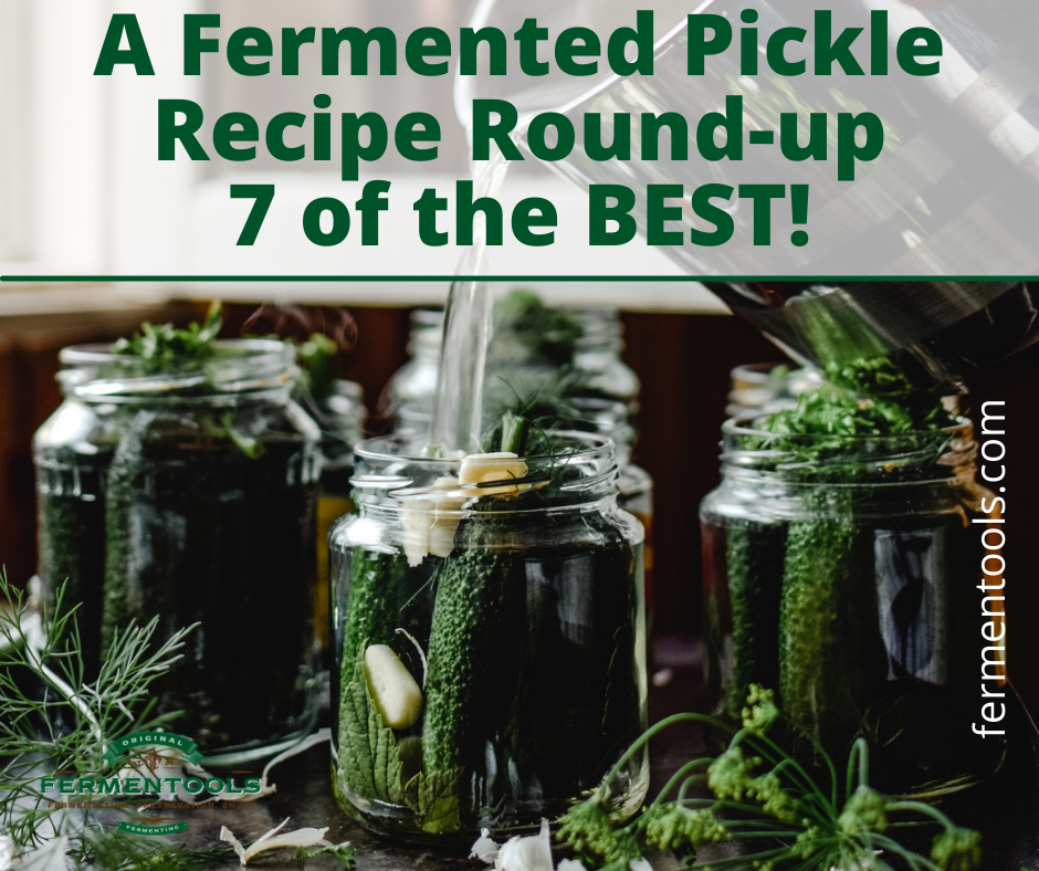lacto fermented pickle recipes