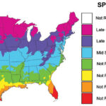 When to Plant Map-Clover