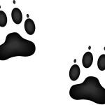 illustrated image of animal paw tracks