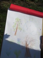 school, trees, evidence, field study, outdoors, nature, writing, drawing,