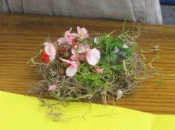 bird nest, art, science, Nature Detectives, fun, creativity, nature