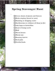 scavenger hunt, explore, discovery, discover, fun, spring, search