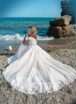 Beautiful long trail pink tulle skirt dress with stylish satin-sheer appliquéd bodice
