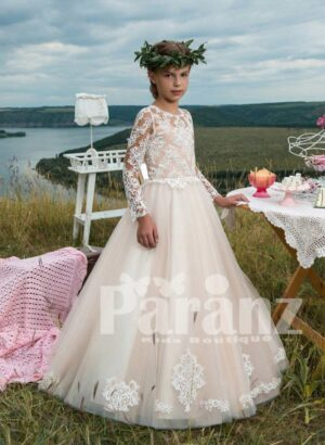 Full sleeve sheer bodice dress with long organza tulle skirt