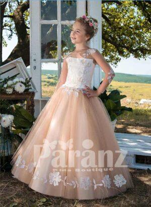 Long sleeve satin-sheer appliquéd bodice and beige tulle skirt dress