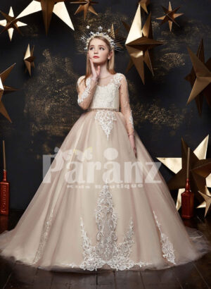 Beautiful satin-sheer tulle skirt dress with major white appliqué works