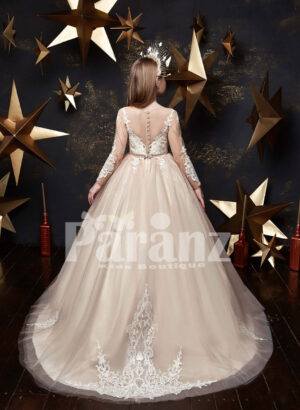 Beautiful satin-sheer tulle skirt dress with major white appliqué works back side view