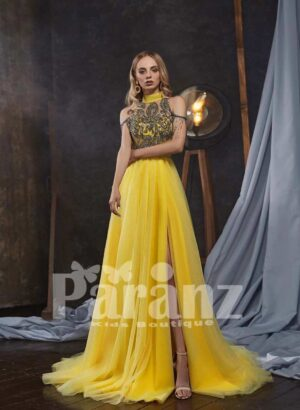 Elegant tulle skirt gown with sequin-rhinestone work royal bodice and sleeves
