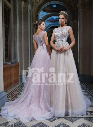 Long trail soft tulle party gown with beautiful threaded embroidery for women side view
