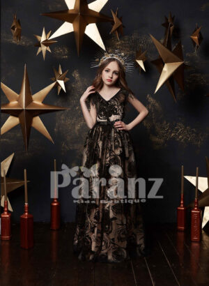 Long tulle skirt dress with appliquéd sheer cover and feather frill bodice in black