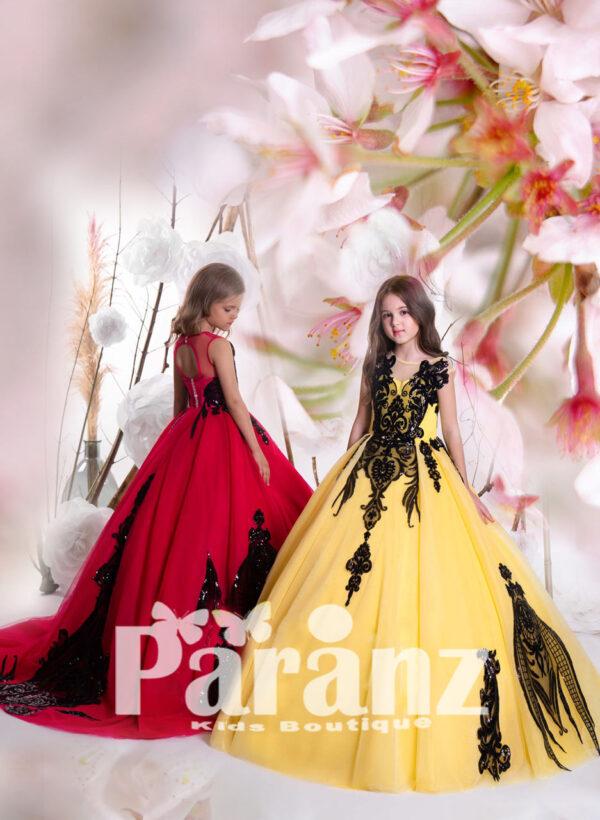 Soft satin-sheer tulle skirt gown dress with major black appliqué works