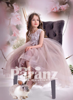 Soft satin-sheer tulle skirt with pearl and appliquéd design bodice