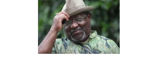 Mugenzi w'imyaka 71 ukekwaho Jenoside yafatiwe mu Buholandi