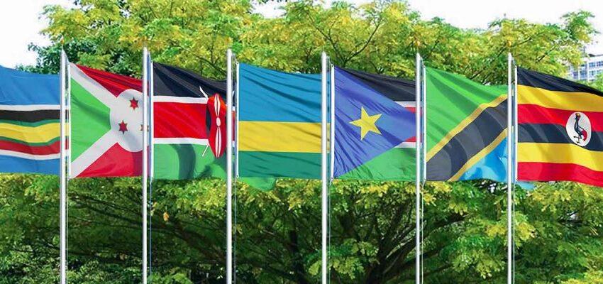 Tshisekedi yaba ari we gisubizo ku bibazo politiki byashinze imizi hagati y'u Burundi -u Rwanda na Uganda?