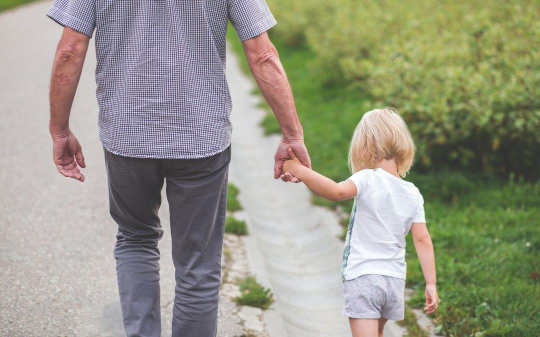 Child Custody Case Decisions