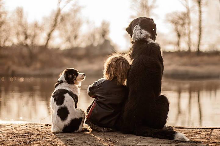 iPhotoChannel_fotografia_cachorro_crianca_agnieszka-gulczynksa-3