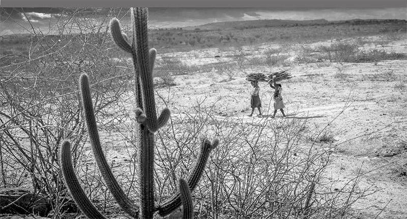 J.R. Ripper - Prêmio Brasil Fotografia Especial 2014