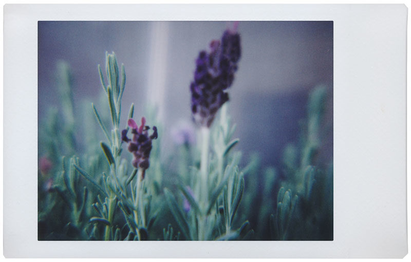 iphoto-lomography-camera-instantanea-automatica (7)