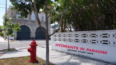 Rod-Stu-Da's Hydrants in Paradise Photo Exhibit Feb 17-Mar 17!