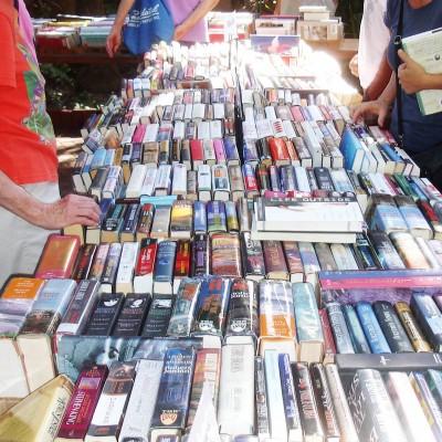 Library Book Sale Rain Delay