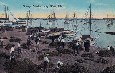 RESCHEDULED DATE: Sail into Historic Exploration with Key West Art & Historical Society, Hindu Charters and Archaeologist Corey Malcom, Ph.D.