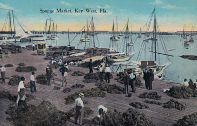Sail into historic exploration with Key West Art & Historical Society, Hindu Charters and archaeologist Corey Malcom, Ph.D.