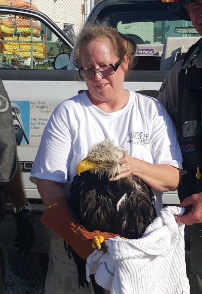 Peggy Coontz with Bald Eagle
