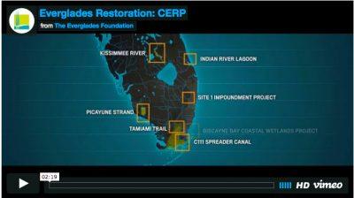 Everglades Restoration: Enough Reports / We Need Storage