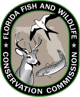 FWC Uncovers Major Alligator Violations in Long-Term Covert Investigation